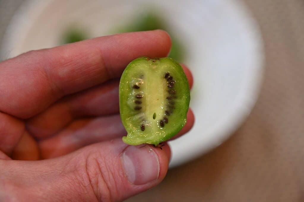 Costco HBF Kiwi Berries bit into
